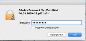Eingabe des Passworts