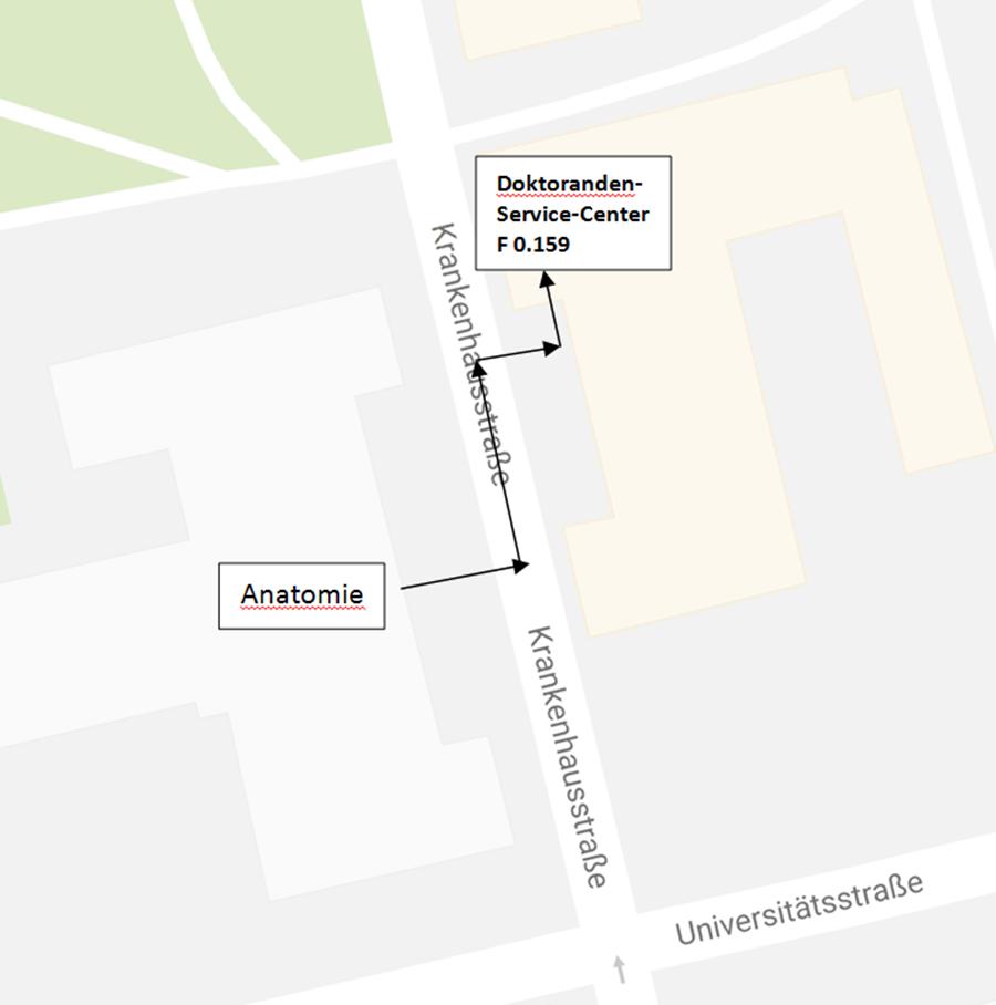 Niedlich Aktuelle Ereignisse In Der Anatomie Galerie - Menschliche ...